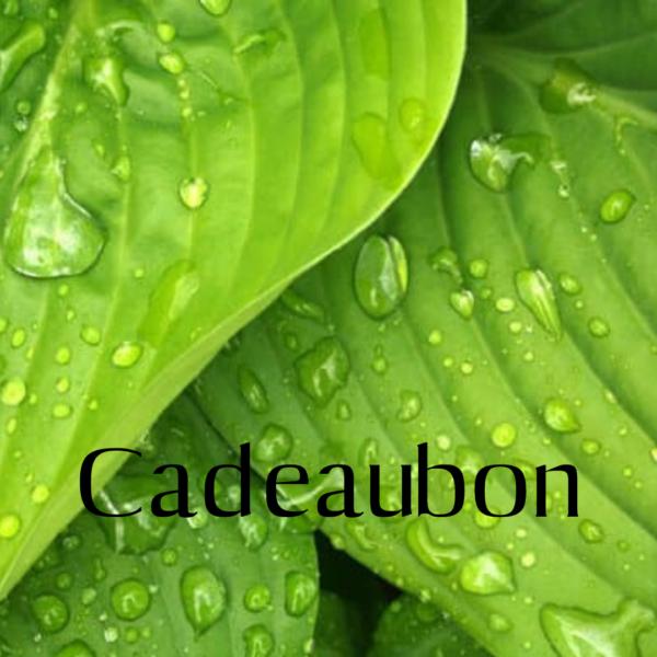 cadeaubon BeAcademy