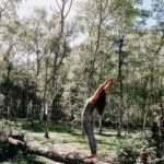 One with Nature, Forest bathing & Mindfulness beleving